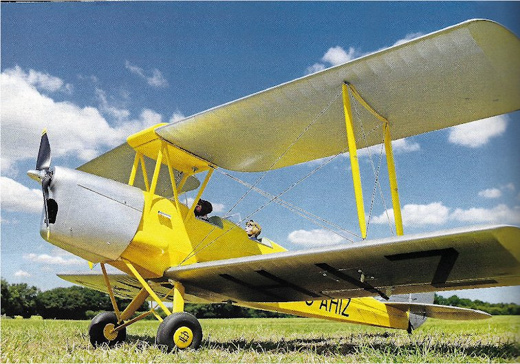1/8 Scale tiger moth